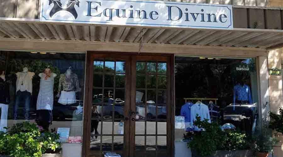 Equine Divine